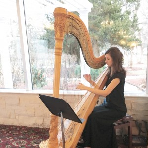 Kimberly Mueller Palazzolo, Harpist - Harpist in Iowa City, Iowa
