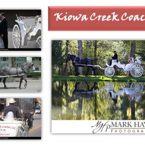 Kiowa Creek Coaches, LLC - Horse Drawn Carriage / Prom Entertainment in Denver, Colorado