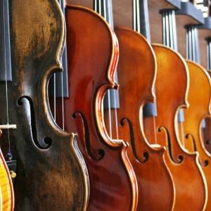 Kirsten Weiss - Violinist in Springfield, Missouri