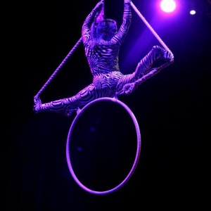 Kitty Stone - Aerialist / Fire Performer in Bristol, Connecticut