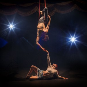 Koz and Effect - Circus Entertainment / Aerialist in Washington, District Of Columbia