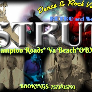 Strut - Cover Band in Virginia Beach, Virginia