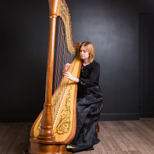 Lacy Reynolds Harpist - Harpist in Alamogordo, New Mexico