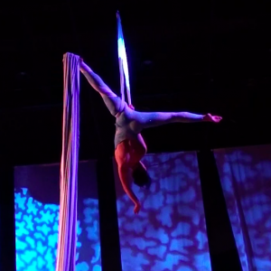 Lis Chere - Aerialist in Detroit, Michigan