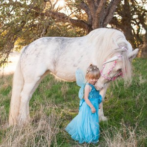 Lady Serenity the Gypsy unicorn - Pony Party in Creston, California