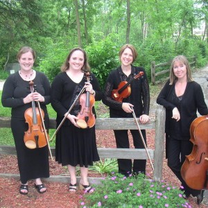Lakeside Strings - String Quartet / Chamber Orchestra in New Berlin, Wisconsin