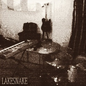 Lakesnake - Rock Band in Austin, Texas