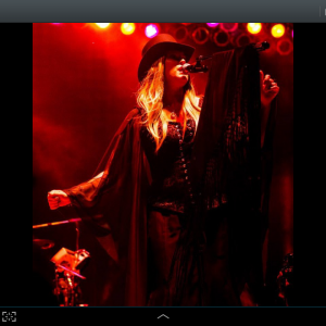 Gypsies, Doves and Dreams - Fleetwood Mac Tribute Band in Kansas City, Missouri