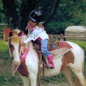Lang's Horse and Pony Farm - Pony Party / Outdoor Party Entertainment in Mount Vernon, Washington