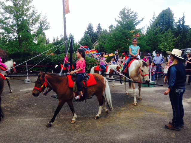 Hire Lang's Horse and Pony Farm - Pony Party in Mount Vernon ...