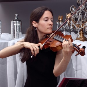 Wedding and Event Violinist - Violinist / Wedding Musicians in Baltimore, Maryland