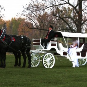 Lanzelot Promenades - Horse Drawn Carriage in New Holland, Pennsylvania