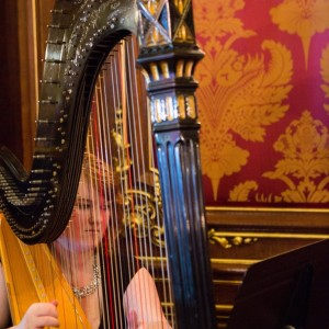 Laura Stokes Harpist - Harpist / Wedding Musicians in Baltimore, Maryland