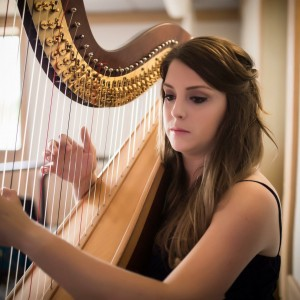 Lauren Hayes, Harpist - Harpist / Tea Party in Chicago, Illinois