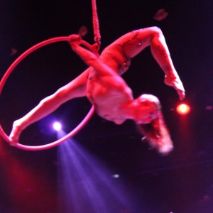 Lexi Andrea - Aerialist in Smithtown, New York