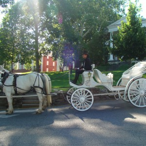 Lexington Carriage Company - Horse Drawn Carriage in Lexington, Virginia