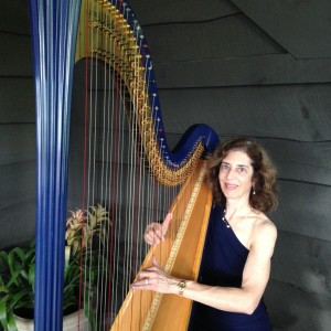 Harpnotes - Harpist / Middle Eastern Entertainment in Atlanta, Georgia