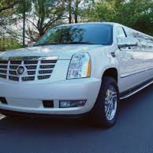 Limo-limousine - Limo Service Company / Party Bus in Seattle, Washington