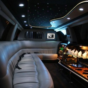Limo and Party Buses