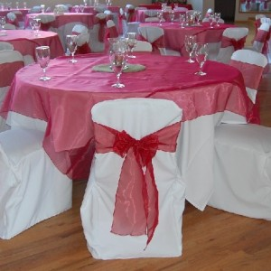 Linens On The Go! - Linens/Chair Covers / Wedding Services in Topeka, Kansas