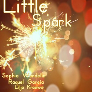 Little Spark - Singing Group / Karaoke Singer in Denver, Colorado