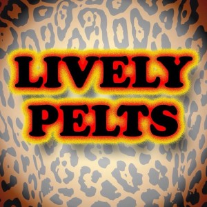 Lively Pelts - Christian Band in Taylor, Michigan