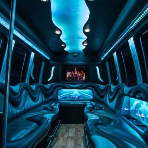 Livonia Party Bus