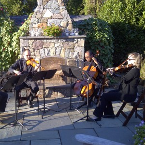 Liya Ensemble - Classical Ensemble / String Trio in Woodbridge, Virginia