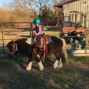 Lone Star Horse Services and Parties - Pony Party in Jefferson, Texas