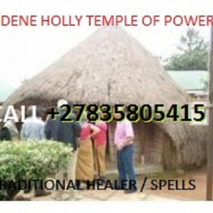 Lost love spells caster +27835805415 - African Entertainment in Nashville, Tennessee