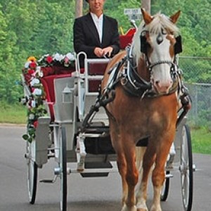 Lotsa Spots Carriage Co - Horse Drawn Carriage / Wedding Services in Campbell, Texas