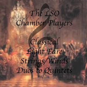 LSO Chamber Players - Classical Ensemble / Classical Duo in Mountain Lakes, New Jersey