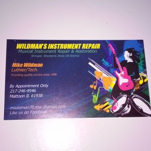 Luthier + Instrument Repair - Fine Artist / Guitarist in Mattoon, Illinois