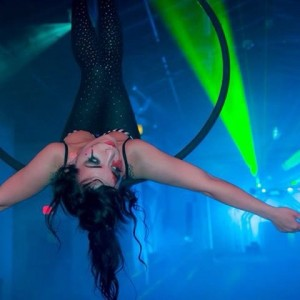 Lynn Lunacy - Aerialist in West Palm Beach, Florida