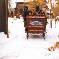 Ma & Pa's Horse Drawn Sleigh & Surrey Rides - Horse Drawn Carriage in Burton, Ohio
