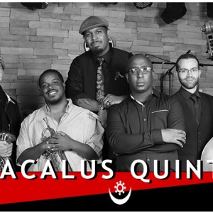 Macalus Quintet - Jazz Band / Wedding Band in Sanford, Florida