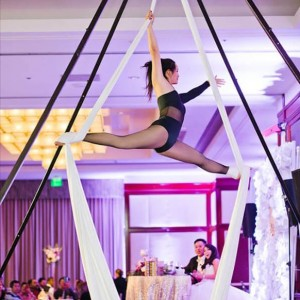 Macy - Aerialist in La Palma, California