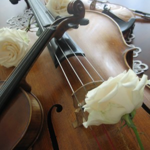 AMK, Violin - Violinist / Wedding Entertainment in St Louis, Missouri