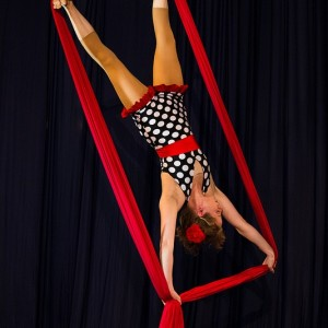 Maevy Aerial Arts - Aerialist in Chicago, Illinois