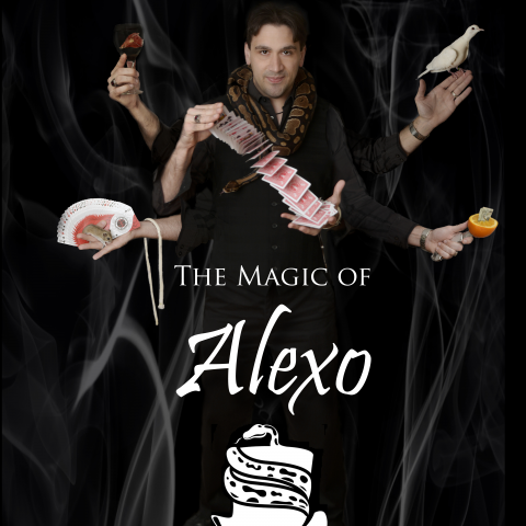 Image result for the magic of alexo