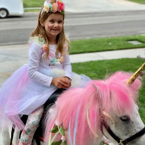 Magical Minis Petting Zoo - Petting Zoo / Children's Party Entertainment in Norco, California