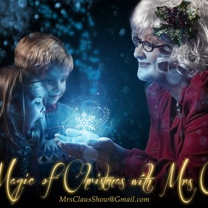 Magical Seasons - Santa Claus / Holiday Party Entertainment in Huntington, West Virginia