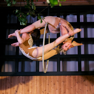Circus Arts Company - Traveling Circus in Portland, Oregon