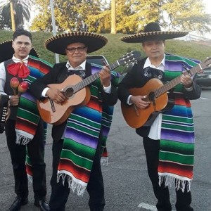 Mariachi Trio El Mexicano - Mariachi Band / Wedding Musicians in Vallejo, California