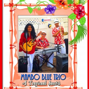 Mambo Blue Latin Band - Latin Band / Children's Music in New York City, New York