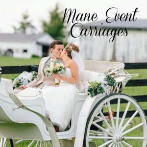Mane Event Carriages - Horse Drawn Carriage / Pony Party in Clayton, Indiana
