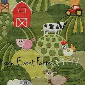 Mane Event Farms - Petting Zoo / Family Entertainment in Clayton, Indiana