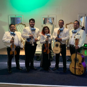 Mariachi Houston - Mariachi Band / Spanish Entertainment in Houston, Texas