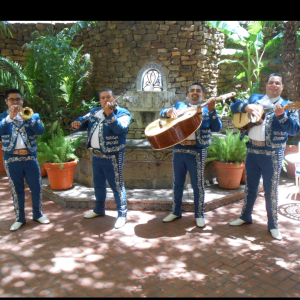Mariachi Quiroga - Mariachi Band in San Antonio, Texas