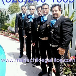 Mariachi Los Gallitos - Mariachi Band in Los Angeles, California